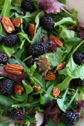 baby-greens-arugula-berries-and-champagne-vinaigraette