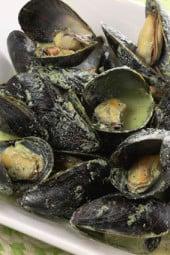 mussles-basil-cream-sauce