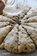 Chocolate Chip Buttermilk Scones are sweetened just to perfection studded with chocolate chips. Kind of like eating a giant chocolate chip cookie for breakfast!