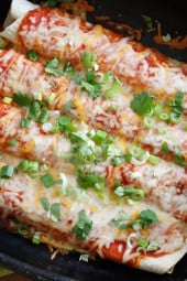 Cheesy meatless enchiladas filled with zucchini and cheese, topped with my homemade enchilada sauce –so delicious whether you are vegetarian or not.