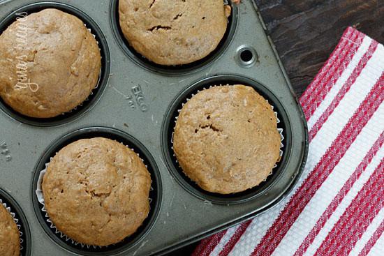 Muffin Fat 24