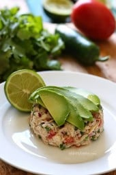 Canned Tuna Ceviche – Transform ordinary canned tuna into a zesty, flavorful lunch with a Latin flair by adding fresh lime juice, cilantro, jalapeño, tomato and avocado in this easy tuna ceviche – so good!